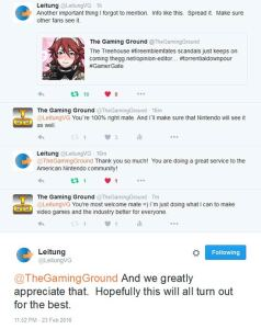 leitung on fire emblem fates-and treehouse