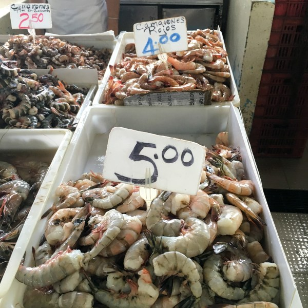 Our Visit to the Panama City Fish Market - Panama, City - http://thegiftedgabber.com/