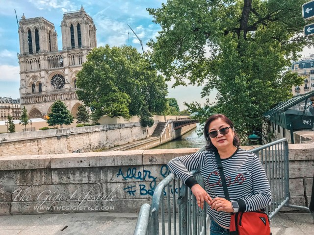The Notre Dame Cathedral and the River Seine