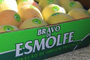 Apple_Bravo_de_Esmolfe_Box