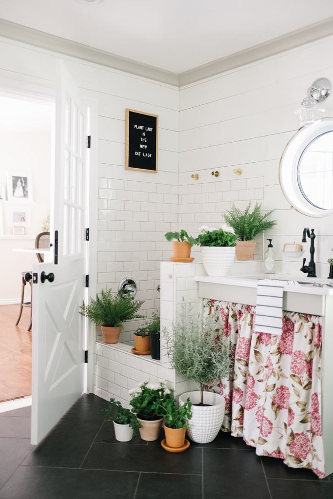 Plants are the easiest summer decor
