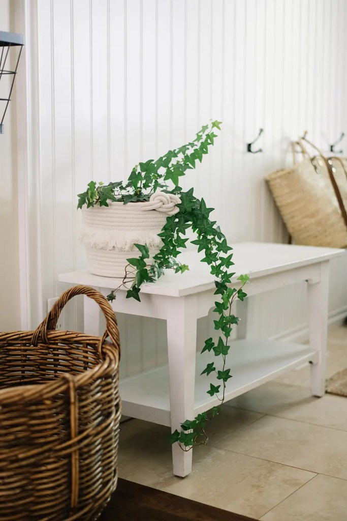 A potted ivy freshens up the entry way bench for summer