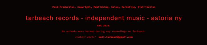 Tarbeach web