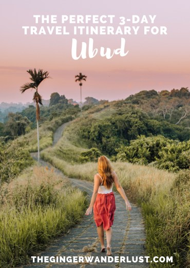 "Nestled in the jungle in the heart of Bali, and made famous by ""Eat, Pray, Love"" is the beautiful town of Ubud. From exploring the rice terraces to playing with monkeys, there are plenty of things to do in Ubud. Here is my 3-day Ubud itinerary!"