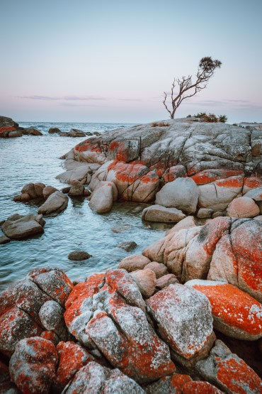 bay of fires-1-4