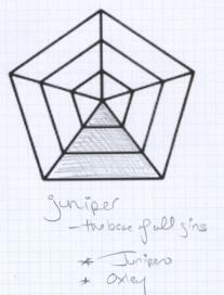 The Gin Is In Gin Flavor Profile: Juniper