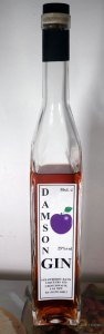 Strawberry Bank Damson Gin