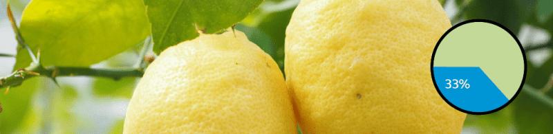 Top 10 Gin Botanicals: #4 Lemon