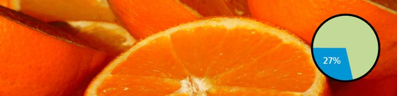 Top 10 Gin Botanicals: #5 Orange