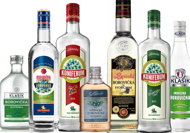 Introduction to Borovicka