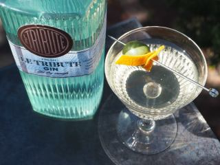 The tribute gin martini