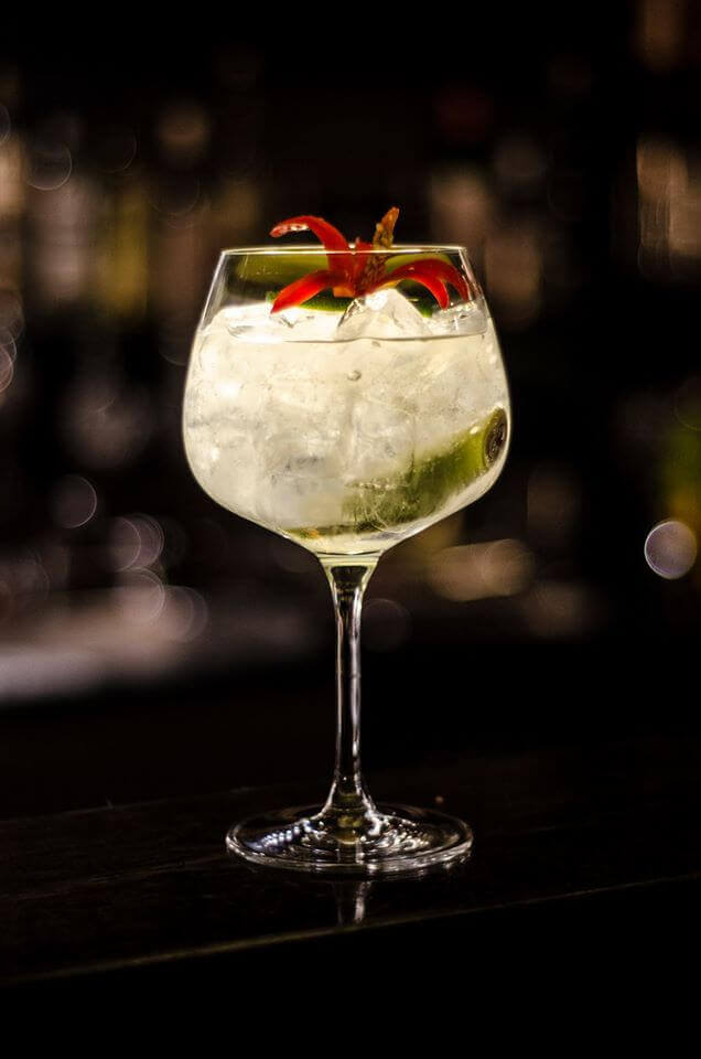 gin-palace-gin-tonic