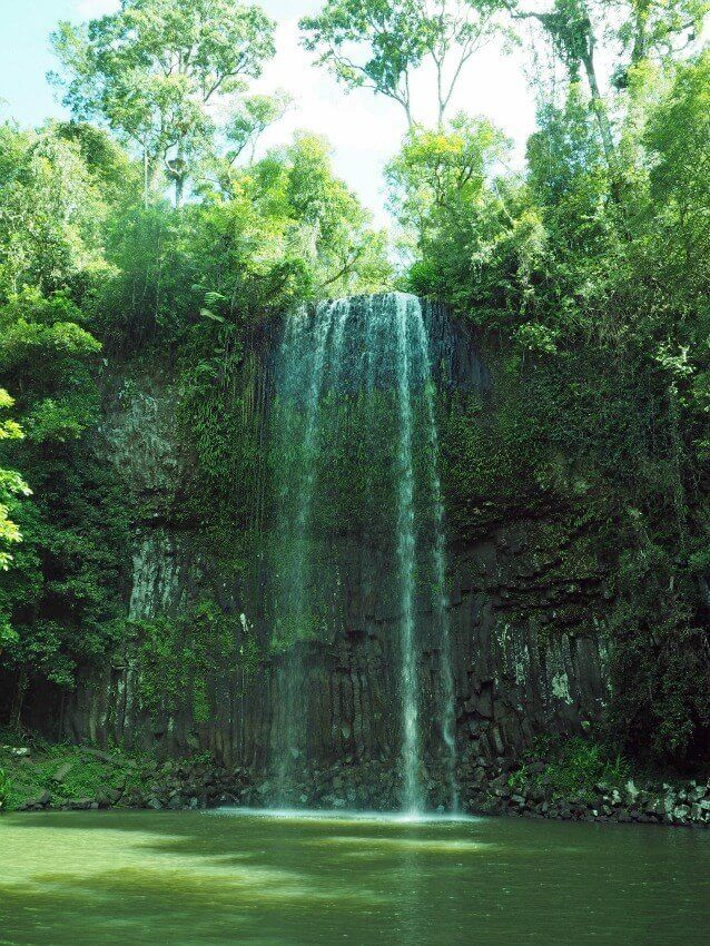 Millaa-Millaa-Waterfalls-Queensland