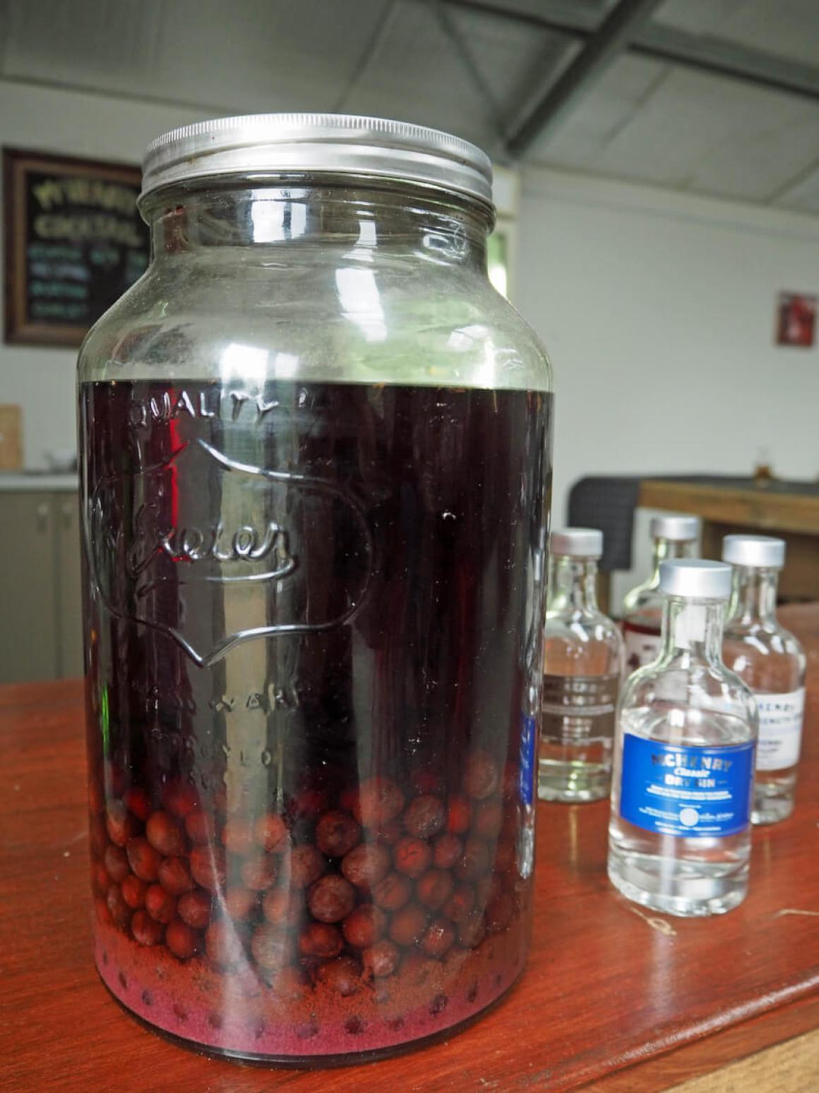 sloe-berries-in-a-jar