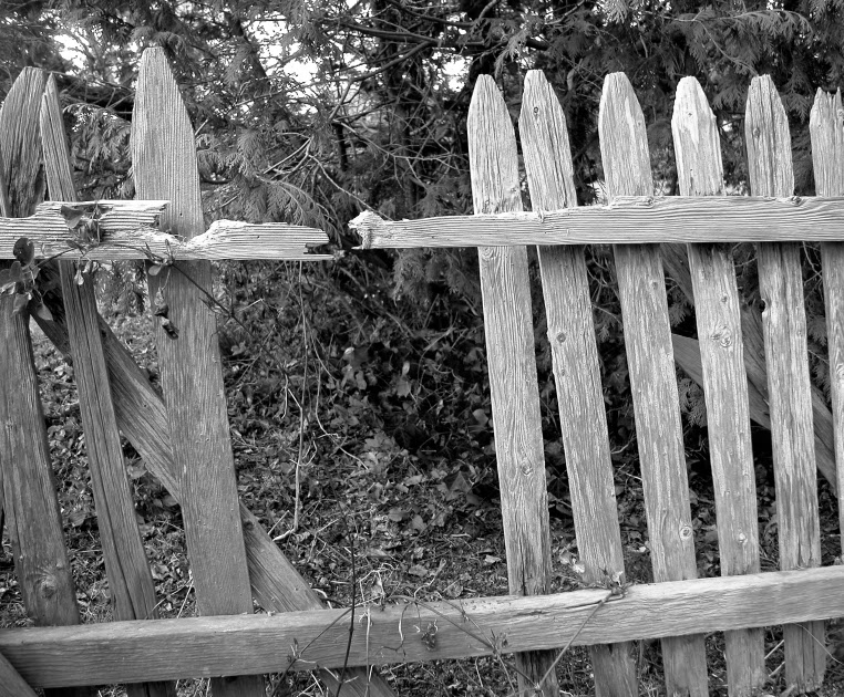 Mending Fences – The Girded Mind