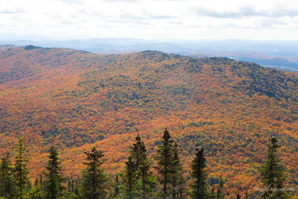 Fall Foliage Vermont Burke Mountain