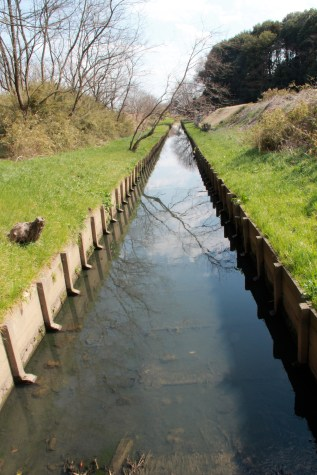 Straight Canal