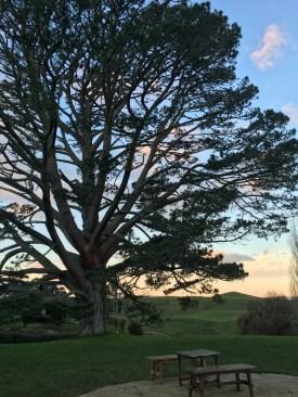 Hobbit banquet - Bilbo's Party Tree