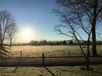 Morning frost in Matamata