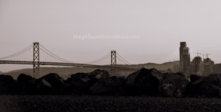 Bay Bridge from Treasure Island Music Festival 2014 | The Girl Next Door is Black
