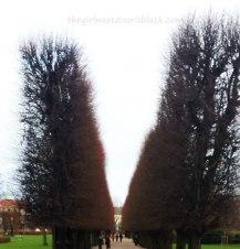 Rosenborg Castle Trees Copenhagen | The Girl Next Door is Black