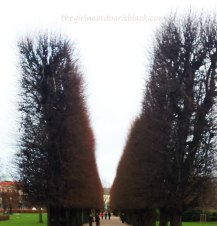 Rosenborg Castle Trees Copenhagen | The Girl Next Door is Black