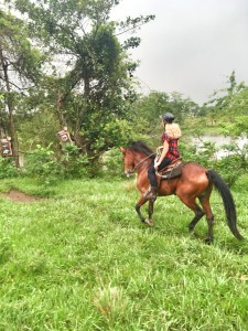 The girl on a bike dominican republic cana tequila horse riding stallion Paso Higueyano