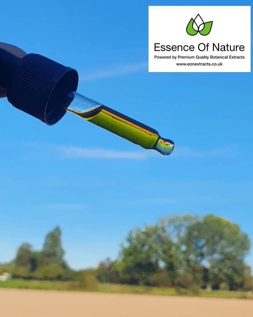 CBD oil essence of nature