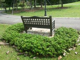 Afternoon at Botanic Gardens