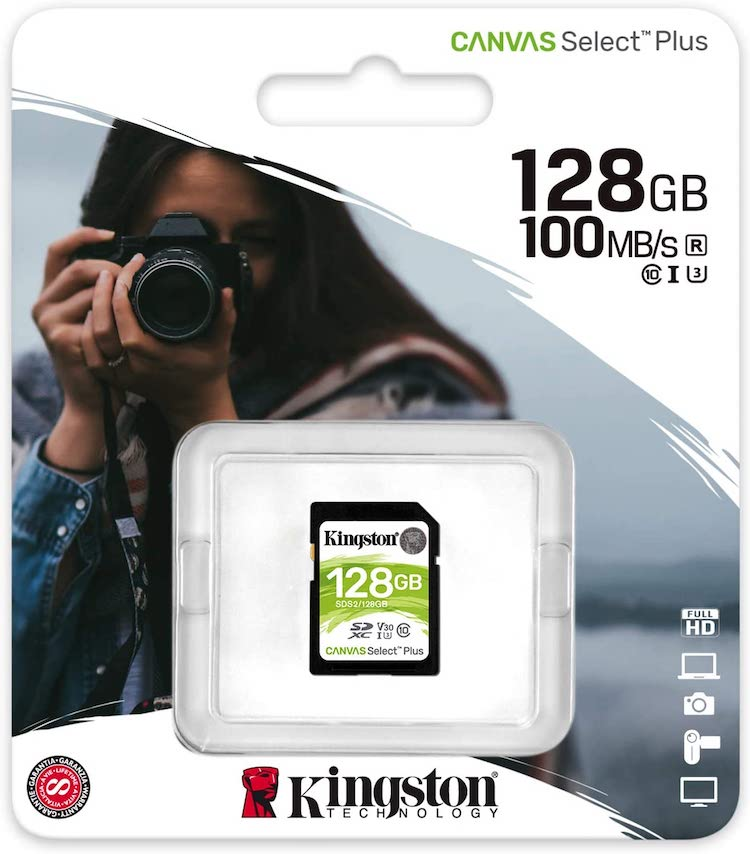 best gopro max memory cards