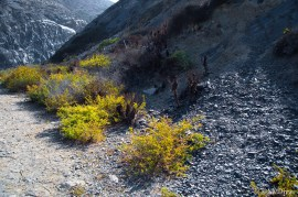 Below Mugu Rock