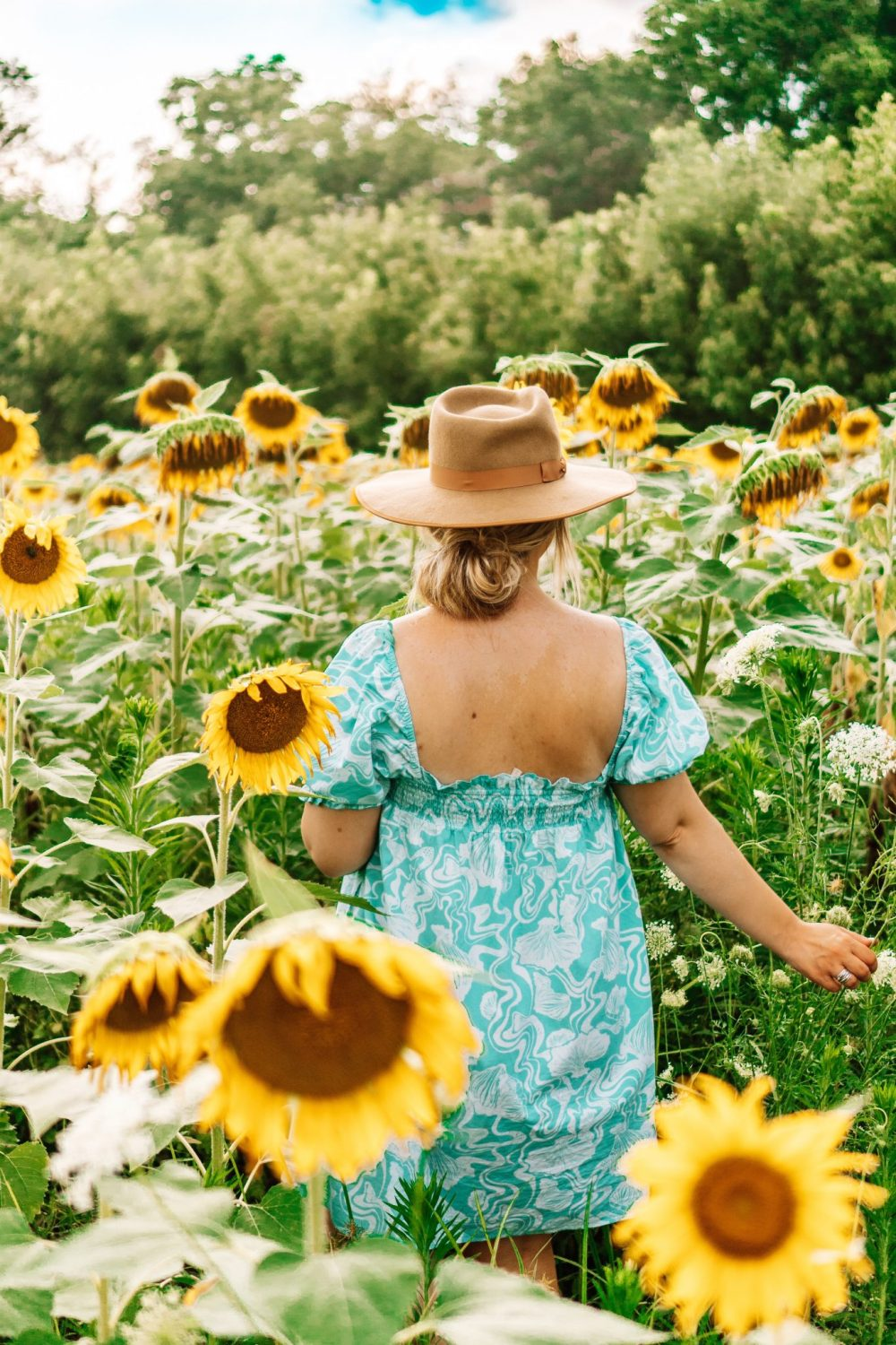 Life update from Lacey Anne Douthat popular Tennessee blogger of The Glitter Gospel. Sunflower fields, Ijams Nature Center, Knoxville TN, Lack of Color Hat, Denim Shorts, One Teaspoon, Daily outfits, outfit ideas