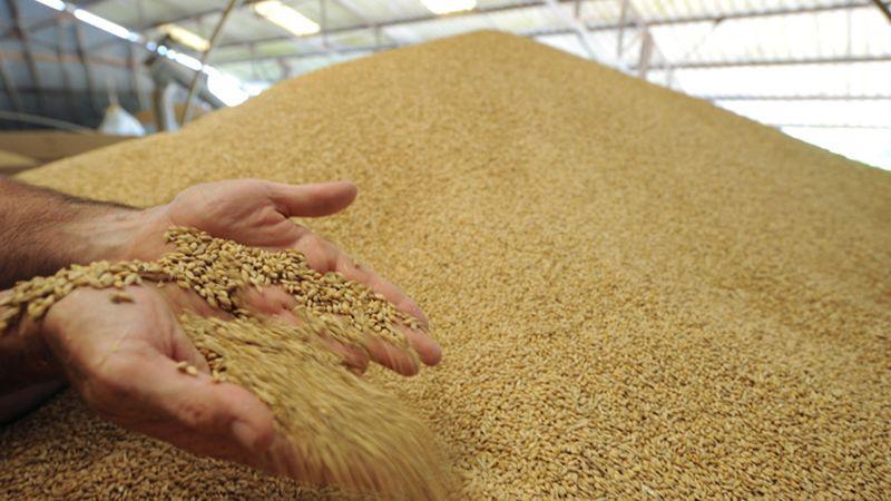 monsanto-gmo-wheat-storage.si