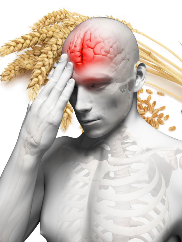 grain_brain_damage_gluten