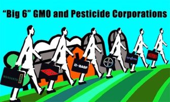 Monsanto is not the only corporate giant that destroys our world, some of these are just as bad