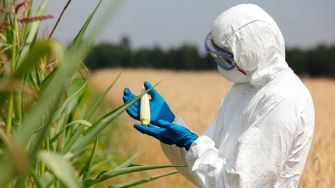 The Ongoing Propaganda War Behind GMOs Exposed