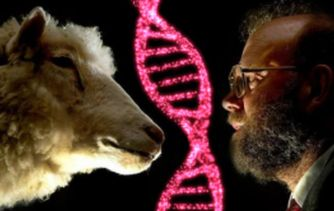 Biotech's Bizarre World: 7 Genetically Modified Animals