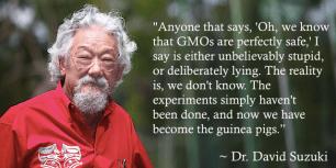 Dr-David-Suzuki-GMO-Quote