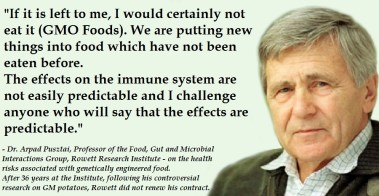 """""""If it is left to me, I would certainly not eat it. We are putting new things into food which have not been eaten before. The effects on the immune system are not easily predictable and I challenge anyone who will say that the effects are predictable. And on the ability of the regulatory system to cope with prospect of the arrival of large numbers of GM crops: Once the floodgate was opened, it's almost impossible. A committee cannot deal with it."""" - Dr. Arpad Pusztai, Professor of the Food, Gut and Microbial Interactions Group, Rowett Research Institute - on the health risks associated with genetically engineered food. After 36 years at the Institute, following his controversial research on GM potatoes, Rowett did not renew his contract."""