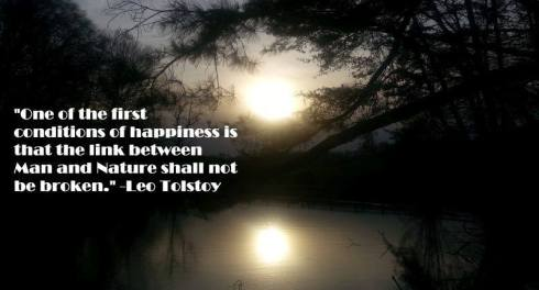 Leo Tolstoy Quote 4