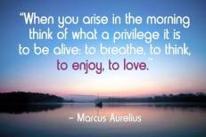 Marcus Aurelius Quote 1