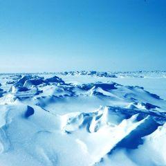 Arctic Pollution