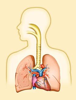 Image Credit: http://www.epa.gov/