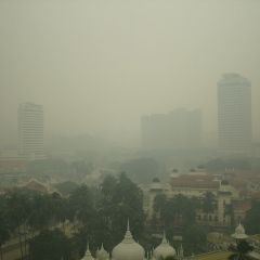 Air Pollution: The Most Widespread Environmental Carcinogen