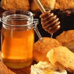 Flame Retardants in Honey?