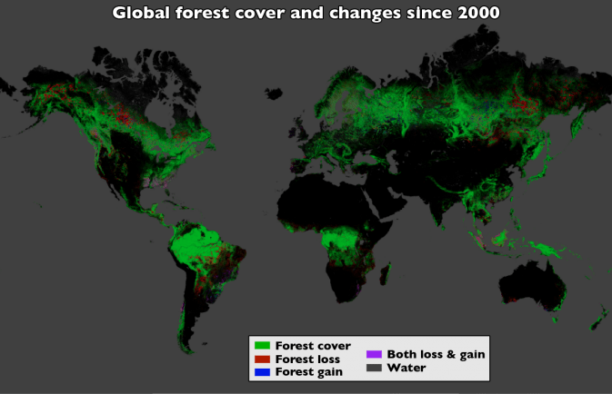 forest-cover-global