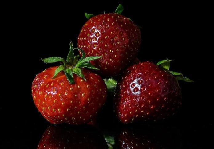 fertilizer strawberry