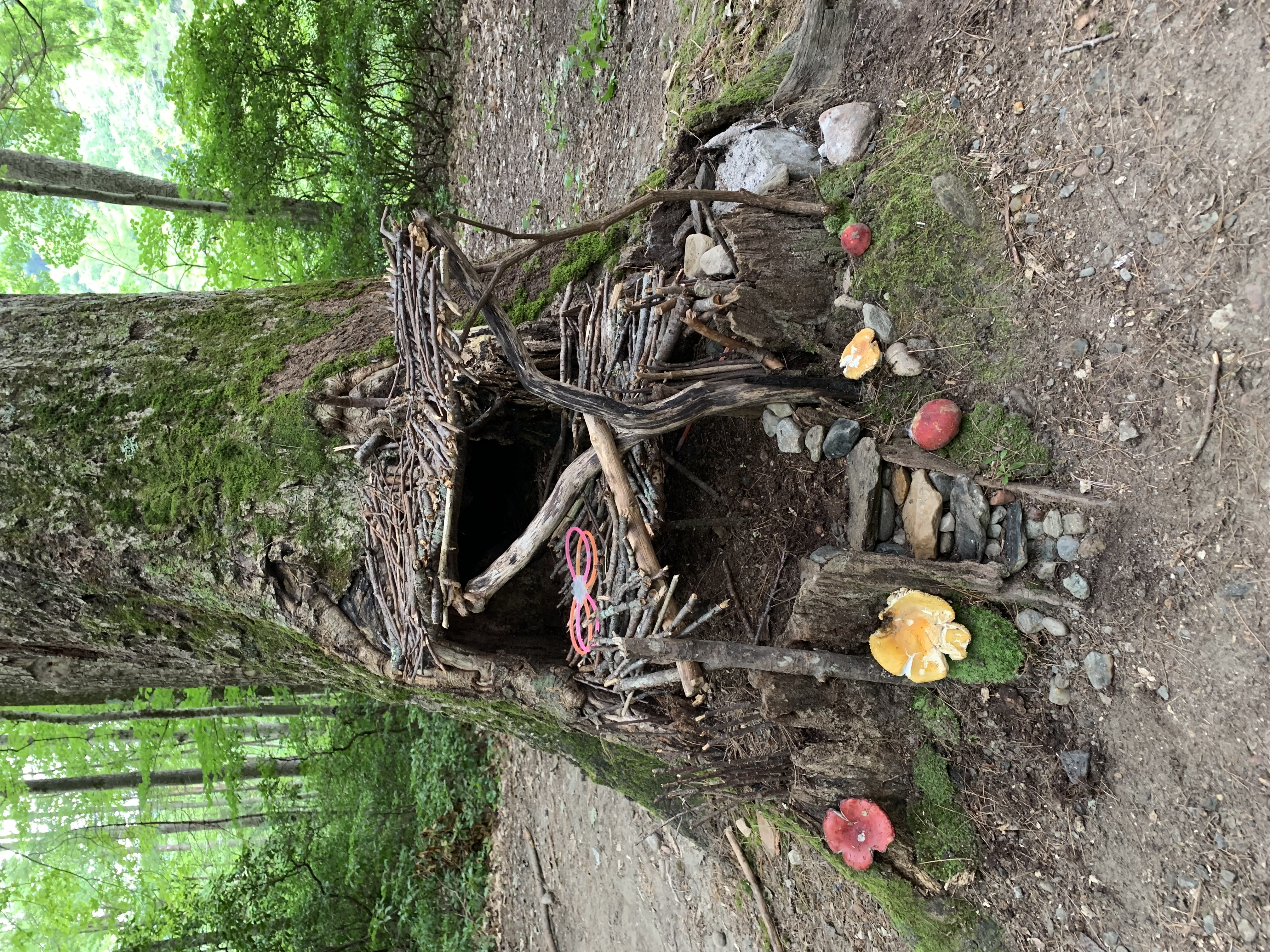 Family Camping at Mohawk Trail State Forest   The Global Kid's Clan