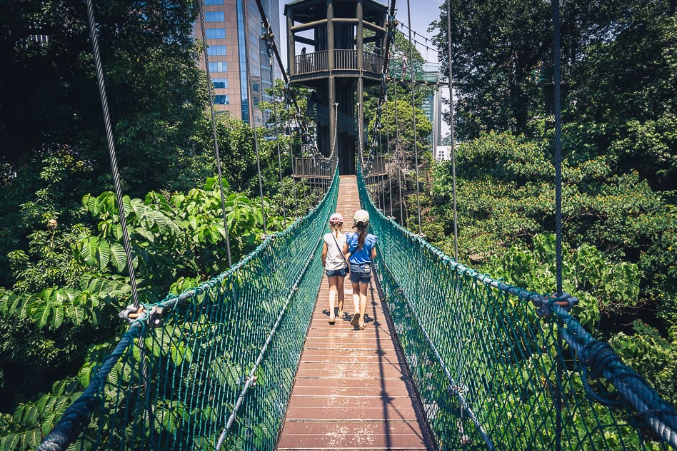 Kids Canopy Walk KL Eco Forest Kinderen