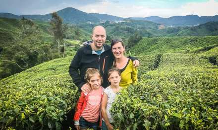 Reisdagboek #4: Thee drinken in de Cameron Highlands